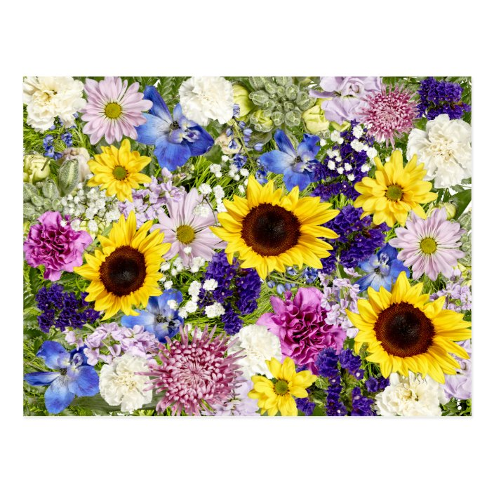 Colorful Spring Flowers Floral Collage Photo Postcard Zazzle Com