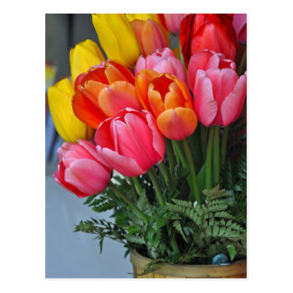 Colorful spring tulips postcard