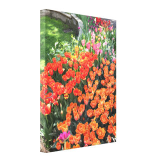 Colorful Spring Tulips, Upper West Side Garden NYC Canvas Print