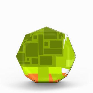 Colorful Square Shaped Green Cartoon Turtle Acrylic Award