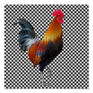 Colorful Strutting Rooster Poster