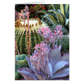 Colorful Succulent Garden Stationery Note Card