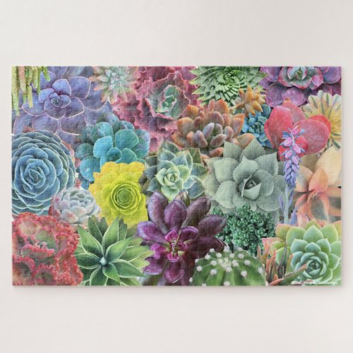 Colorful Succulent Puzzle