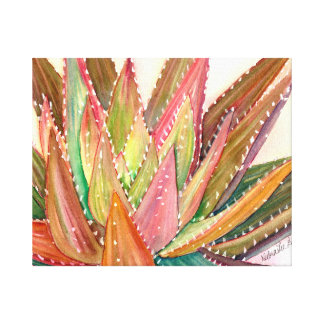 Colorful succulent watercolor by Debra Lee Baldwin Canvas Print
