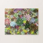"""Colorful Succulents Jigsaw Puzzle<br><div class=""""desc"""">Beautiful succulent arrangements displayed at the garden show.</div>"""