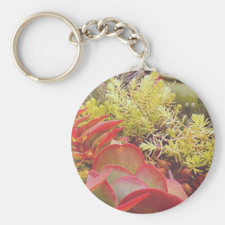 Colorful Succulents Keychain