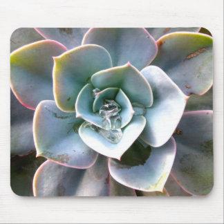 Colorful Succulents Mousepad #3