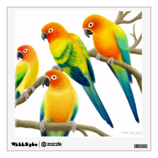 Colorful Sun Conures Wall Decal