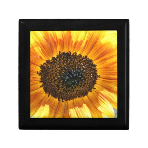 Colorful Sunflower tile gift box