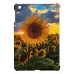Colorful Sunflowers in a Field iPad Mini Case