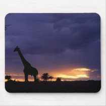 Colorful sunset late afternoon image of safari mouse pad
