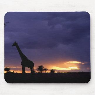 Colorful sunset late afternoon image of safari mousepad