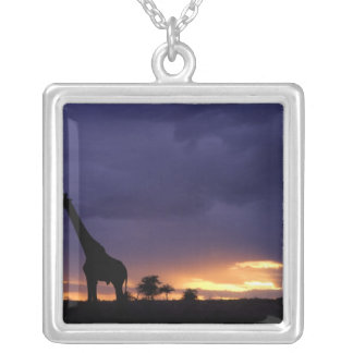 Colorful sunset late afternoon image of safari silver plated necklace