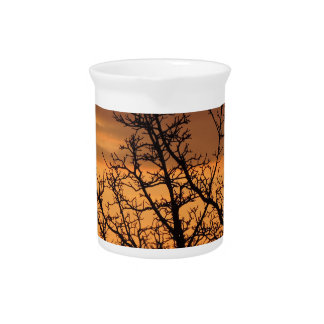 Colorful Sunset with tree silhouette Pitcher