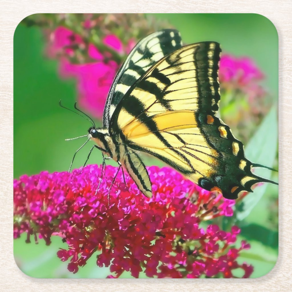 Colorful Swallowtail Butterfly Paper Coaster