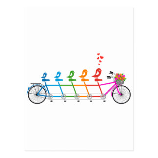 colorful tandem bicycle with cute birds family postcard