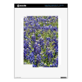 Colorful Texas Bluebonnets - Lupinus texensis iPad 3 Skin