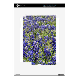 Colorful Texas Bluebonnets - Lupinus texensis Decals For The iPad 2