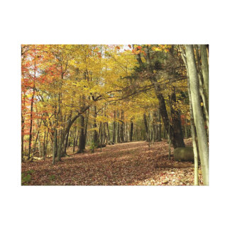 Colorful Thanksgiving Autumn Foliage Canfield Ohio Canvas Print