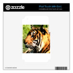 Colorful Tiger iPod Touch 4G Skin