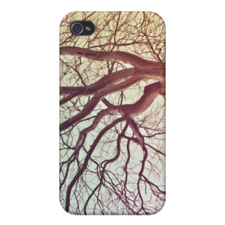 Colorful tree iPhone 4 Speck case