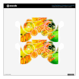 Colorful tree leaves in autumn season outdoors PS3 controller skin