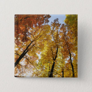 Colorful Trees Button