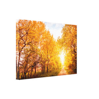 Colorful trees by the road in autumn canvas print