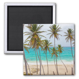 Colorful Tropical Beach 2 Inch Square Magnet