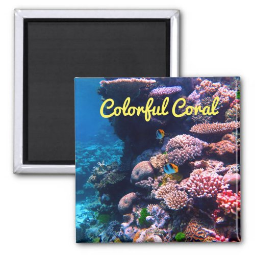 Colorful Tropical Coral Reef Magnet