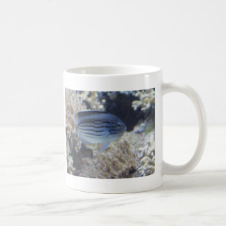 Colorful tropical fish picture coffee mug