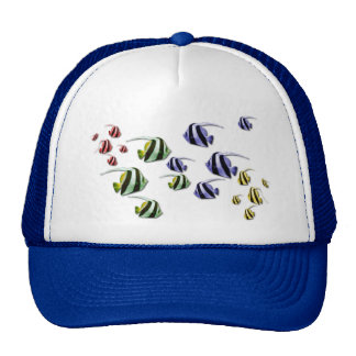 Colorful Tropical Fish Swimming Free Hat