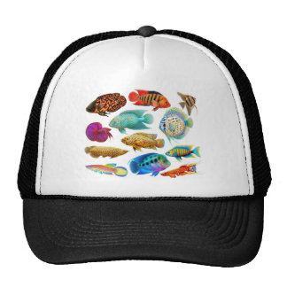 Colorful Tropical Fish Trucker Hat