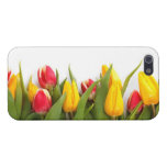 Colorful Tulips Case For iPhone 5