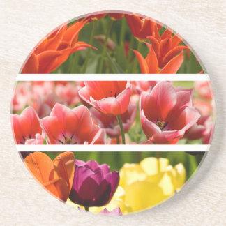 Colorful Tulips Coasters