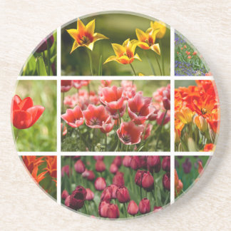 Colorful Tulips Drink Coasters