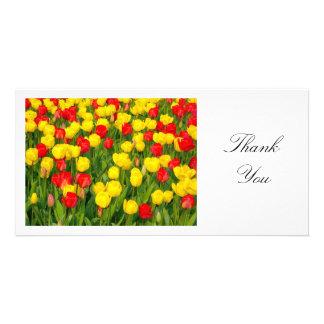 Colorful Tulips II - Thank You Card