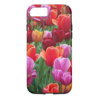 Colorful Tulips iPhone 7 Case