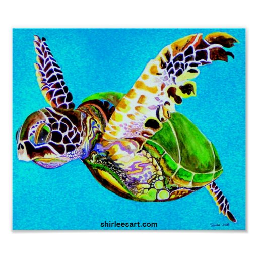 colorful turtle poster