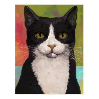 Colorful Tuxedo Cat Postcard