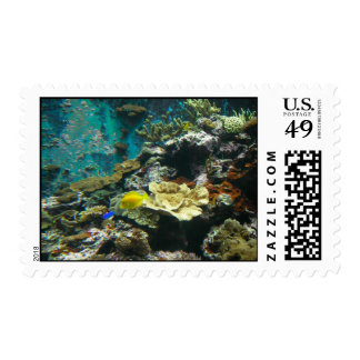 Colorful Undersea World/Coral Reef Marine Life l Postage Stamp