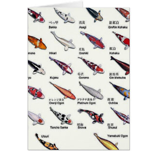 Colorful Varieties of Koi Fish Drawing Pattern Greeting Card