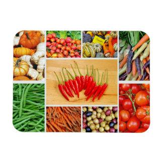 Colorful vegetables print magnet