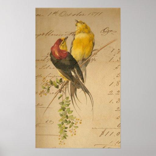 Colorful Vintage Birds On Vintage Ledger Paper Print