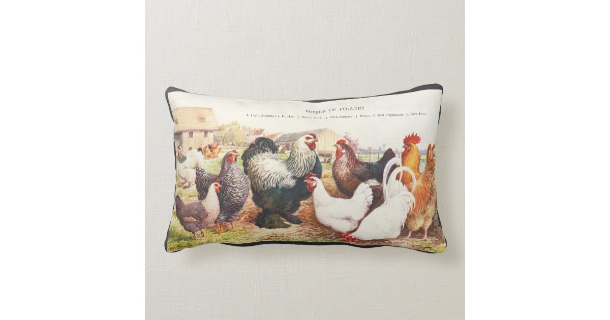 Colorful vintage group of chickens on throw pillow Zazzle