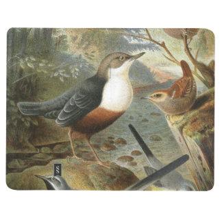 Colorful vintage illustration of birds notebook journals