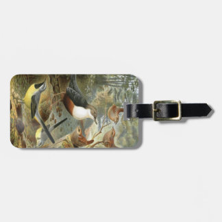 Colorful vintage illustration of birds tag tags for bags