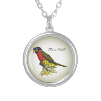 Colorful vintage parrot illustration name silver plated necklace
