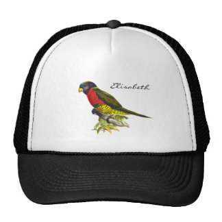 Colorful vintage parrot illustration name trucker hat