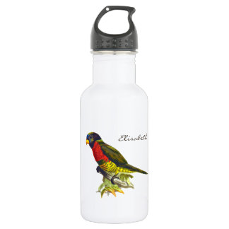 Colorful vintage parrot illustration stainless steel water bottle